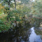 Vattendragen i Lerums kommun